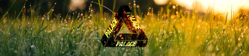 Palace Skateboards Brand